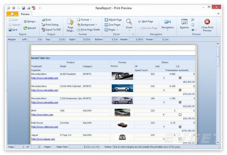 DevExpress VCL Controls预览:
