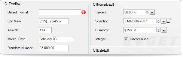 ComponentOne Studio Enterprise预览:input-editing