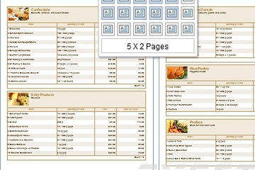 Stimulsoft Reports.PHP预览:View a multi-page report