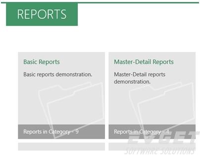 Stimulsoft Reports.WinRT预览:navigator