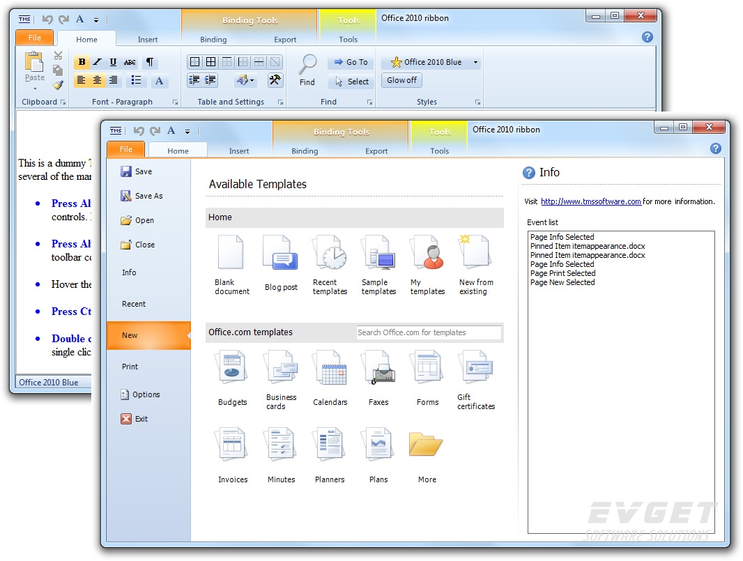 TMS Component Pack预览:Office 2010 Combination