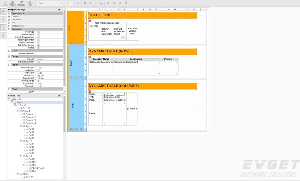 FastReport Online Designer预览:FastReport Online Designer