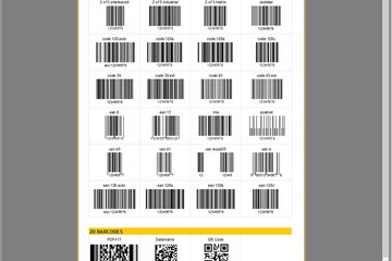 FastReport VCL预览:barcodes