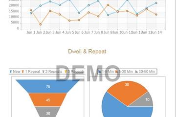 Stimulsoft Reports.Net预览:Site Statistics