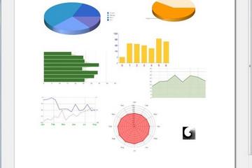 NCReport预览:online Google chart