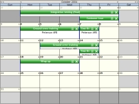 TMS ASP.NET WebPlanner预览:month planner