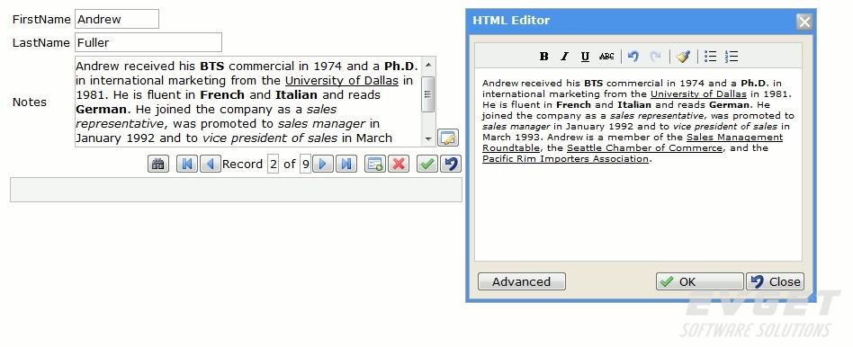 DbNetSuiteVS预览:html_editor