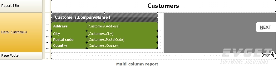 FastReport.Net预览:multi-column report