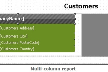 FastReport .Net预览:multi-column report