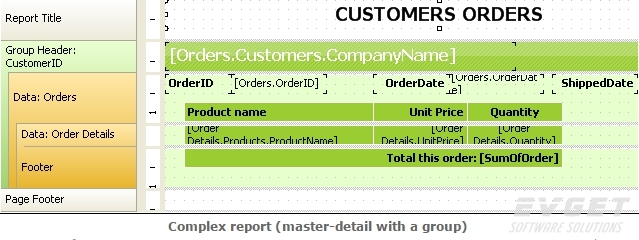 FastReport .Net预览:complex report(master-detail with a group)