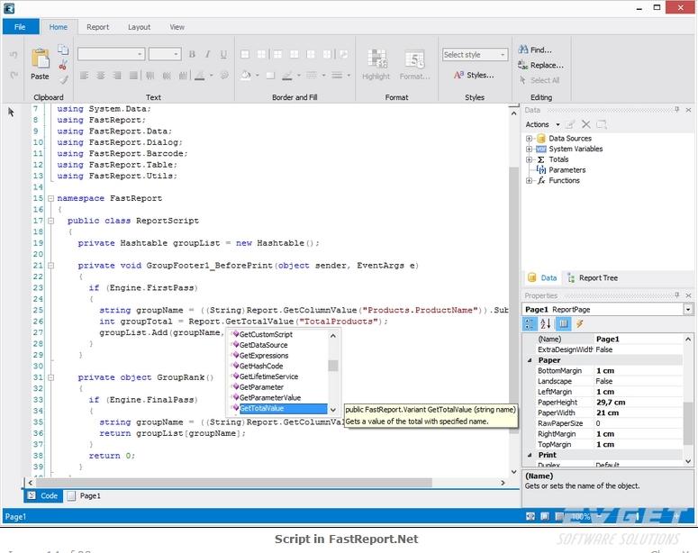 FastReport.Net预览:script in fastreport.Net