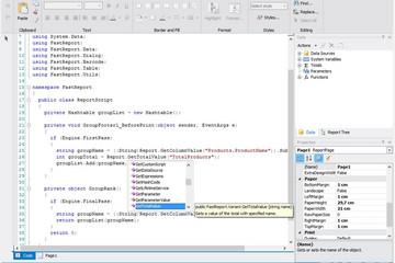 FastReport .Net预览:script in fastreport.Net