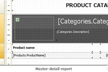 FastReport .Net预览:master-detail report