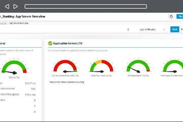 AppPulse Diagnostics预览:应用服务器摘要