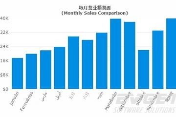 FusionCharts Suite XT预览:Multi-Lingual Charts