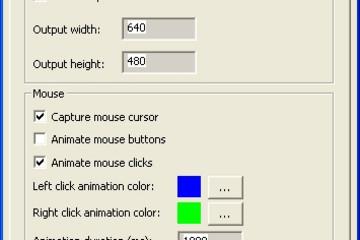 Screen Capturing SDK预览:Screen Capturing 3