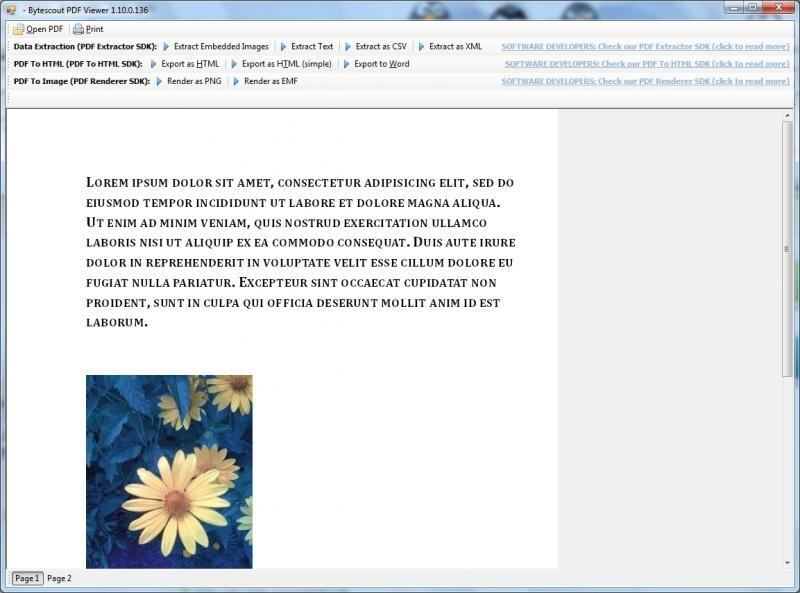 PDF Extractor SDK预览:PDF Extractor SDK 3