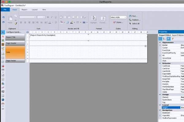 FastReport视频教程:演示版的标签报表如何工作
