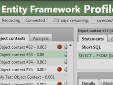 Entity Framework Profiler