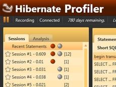 Hibernate Profiler