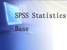 是一款统计分析软件,提供执行全程分析所需的核心功能