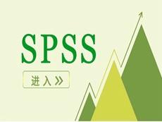 SPSS Statistics Subscription