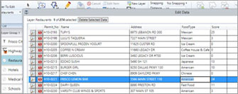 Tabular Data Editing - Map Suite GIS Editor