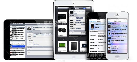 iOS,移动开发,InterSoft 2013,用户界面