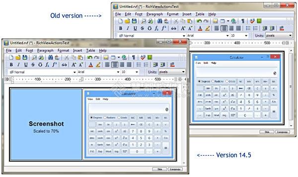 TRichView 14.5,缓存,富文本编辑器