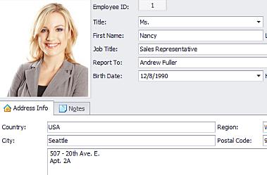 WinForms界面控件初探:强大的嵌入式多功能Data Editors - DevExpress