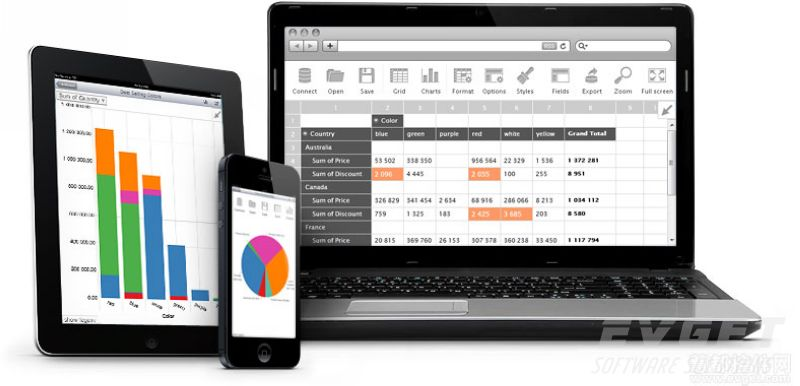 Flexmonster Pivot Table & Charts基于Web、Mobile和Flex的多维数据分析控件