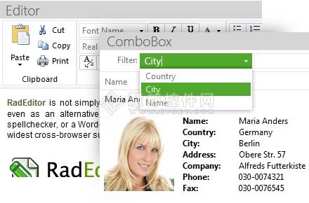 telerik,RadControls for ASP.NET AJAX,用户界面