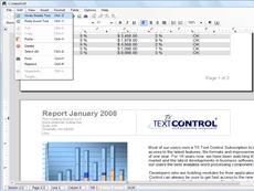 TX Text Control ActiveX Server