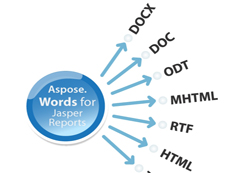 Aspose.Words for JasperReports 可以帮助客户将报表从JasperReports 和 JasperServer 中导出为Microsoft Word document (DOC),Office Open XML (OOXML, DOCX),Rich Text Format (RTF),OpenDocument Text (ODT),Web page (HTML) 和纯text (TXT) 格式。
