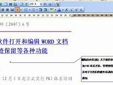 iWebOffice2009全文批注