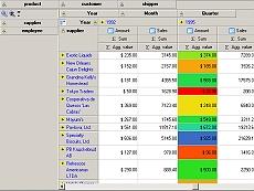 HierCube VCL (OLAP Grid)