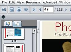Big Faceless Java PDF Viewer