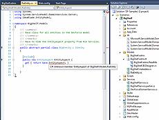 DevForce WinClient