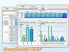 SharpShooter OLAP