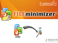 FILEminimizer Server
