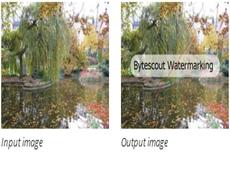 Watermarking SDK
