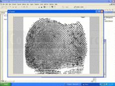 ISIS Xpress是批量扫描工具和ISIS扫描SDK,它使您可以为ISIS扫描仪轻松的创建自定义用户界面。