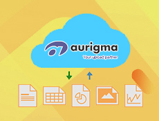 Aurigma Upload Suite