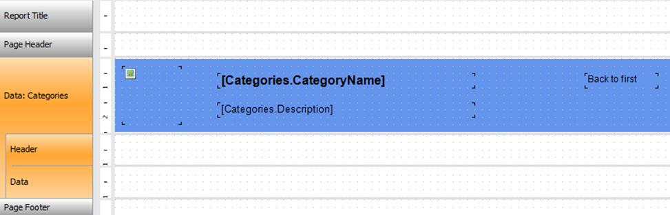 如何创建带有大纲和书签的交互式web报表