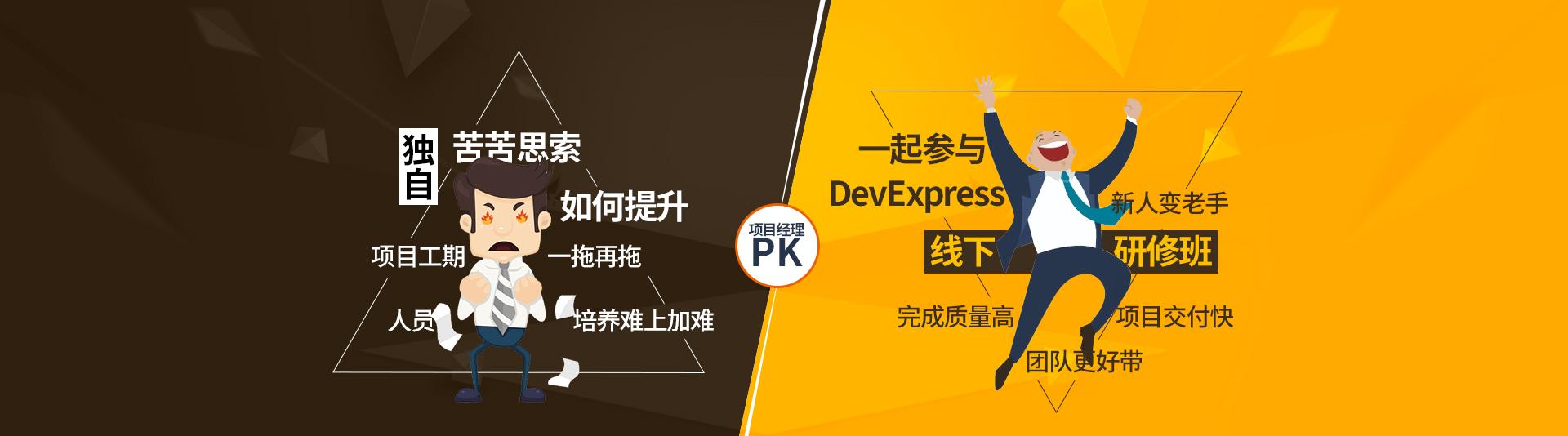 DevExpress 企业定制培训