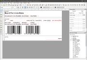 NCreport Designer GUI应用程序