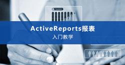 ActiveReport_video