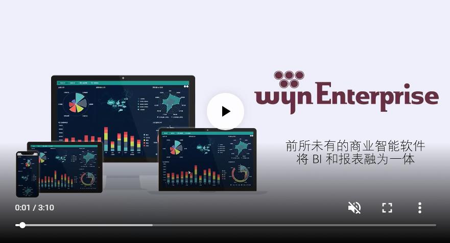 Wyn Enterprise产品介绍