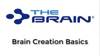 TheBrain101:基础知识网络研讨教程合集