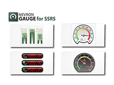 Nevron Gauge for SSRS